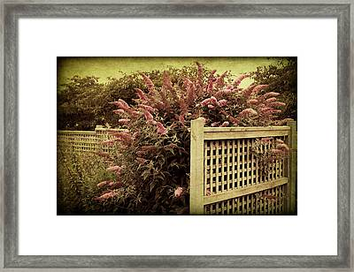 Framed Print featuring the digital art Trellis by Margaret Hormann Bfa