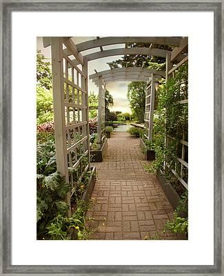Trellis View Framed Print by Jessica Jenney
