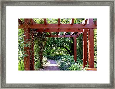 Trellised Walkway  Framed Print by Deborah  Crew-Johnson
