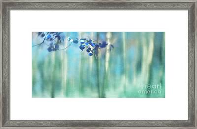 Trembling Leaves Framed Print by Priska Wettstein