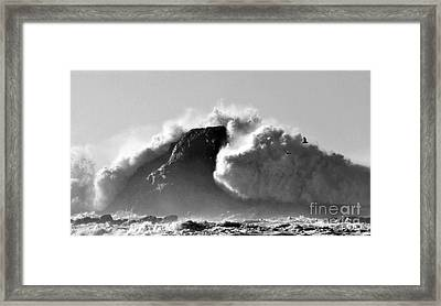 Tremendous Framed Print by Sheila Ping