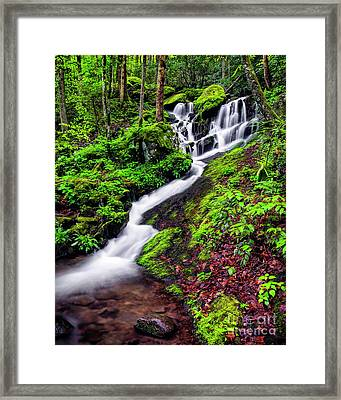 Tremont Area Waterfall Framed Print by Madonna Martin