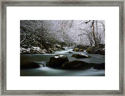 Tremont Treasure Great Smoky Mountains National Park Framed Print