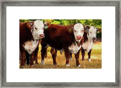 Tres Amigos Framed Print