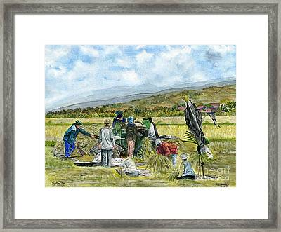 Framed Print featuring the painting Treshing Rice by Melly Terpening