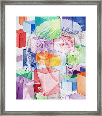 Trey Anastasio-never Get Out Of This Maze Framed Print by Joshua Morton