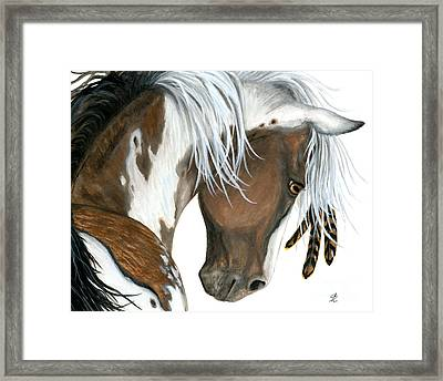 Tri Colored Pinto Horse Framed Print by AmyLyn Bihrle