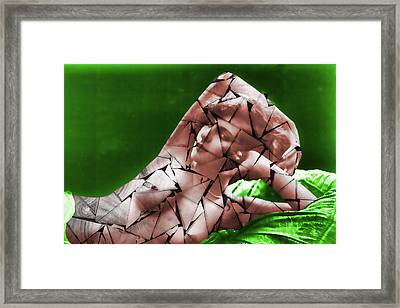 Triangularism Nude Framed Print