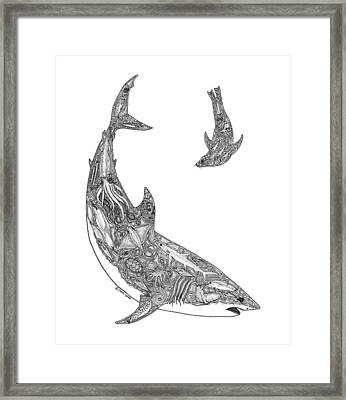 Tribal Great White And Sea Lion Framed Print by Carol Lynne