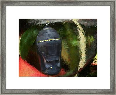 Tribal Mask Framed Print by Nancy TeWinkel Lauren