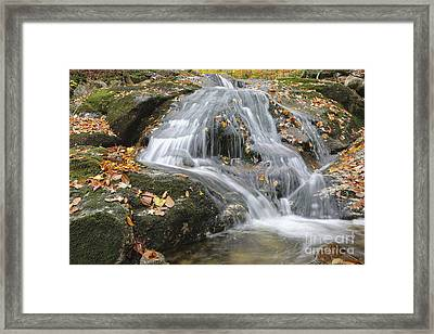Tributary Of Lost River - Woodstock New Hampshire  Framed Print by Erin Paul Donovan