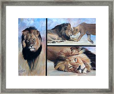 Tribute To Cecil The African Lion Framed Print