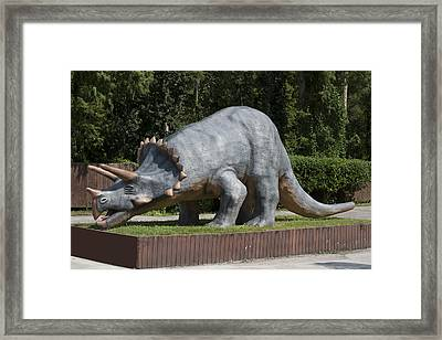 Triceratops Framed Print by Carl Purcell