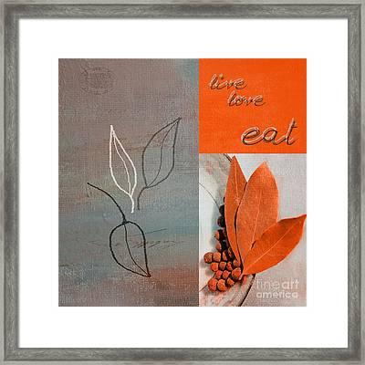 Trilioli Kitchen Decor - Orange 02 Framed Print by Variance Collections