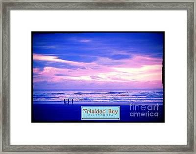 Trinidad Bay Sunset Logo Framed Print