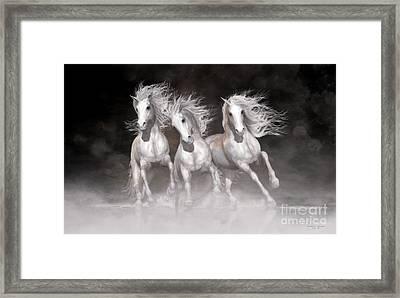 Trinity Horses Neutrals Framed Print by Shanina Conway
