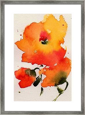 Trio Framed Print by Anne Duke