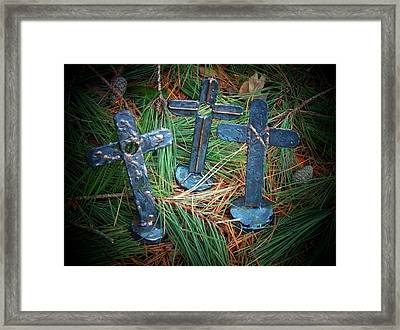 Trio In Pine Framed Print by Deborah Montana