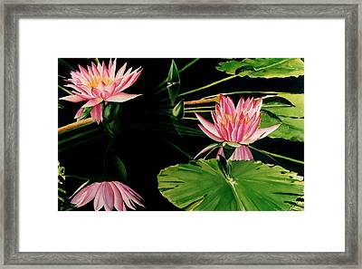 Trio Of Light Framed Print by Maureen Piccirillo