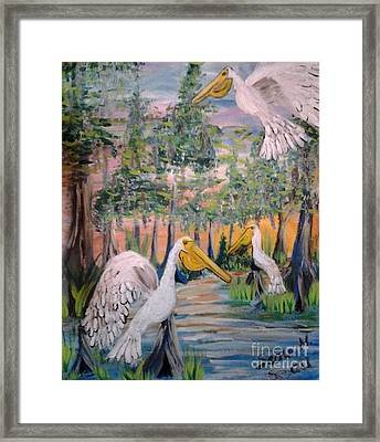 Trio Of Pelicans Framed Print by Seaux-N-Seau Soileau