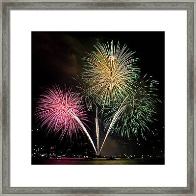 Triple Color Framed Print by David Patterson