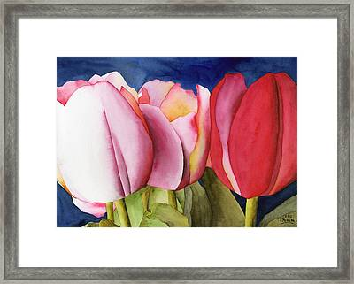 Triple Tulips Framed Print