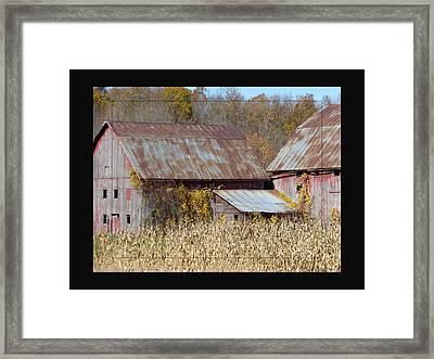 Triplet Barns Framed Print
