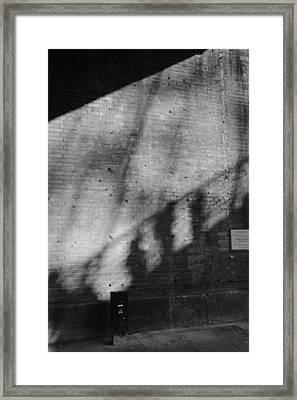Triplicity Framed Print