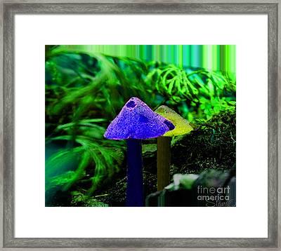 Trippy Shroom Framed Print