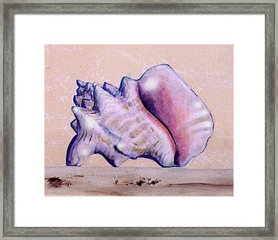 Framed Print featuring the painting Trompe L'oeil Conch Shell by Thomas Lupari