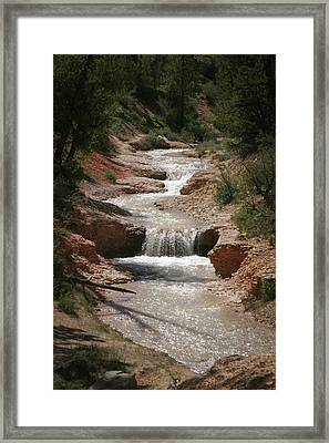 Framed Print featuring the photograph Tropic Creek by Marie Leslie
