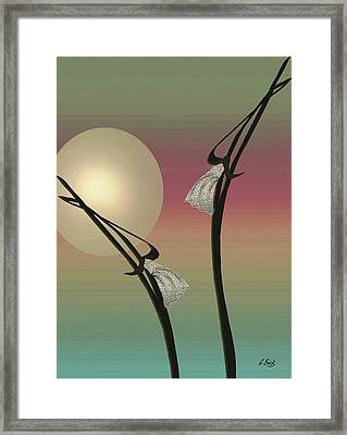Tropic Mood Framed Print