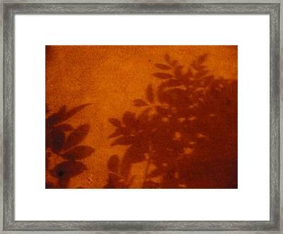 Tropic Sands Framed Print by Stephen Davis