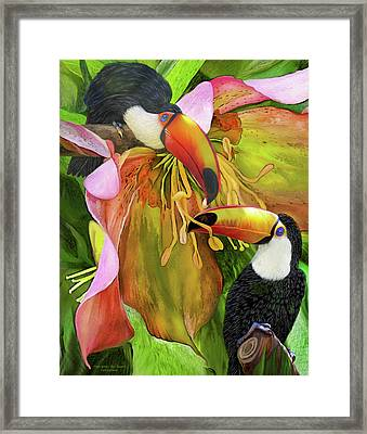 Tropic Spirits - Toco Toucans Framed Print by Carol Cavalaris
