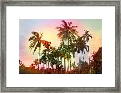 Tropical 11 Framed Print by Mark Ashkenazi
