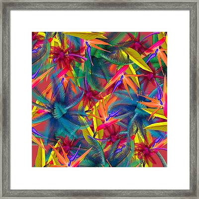 Tropical  7 Framed Print