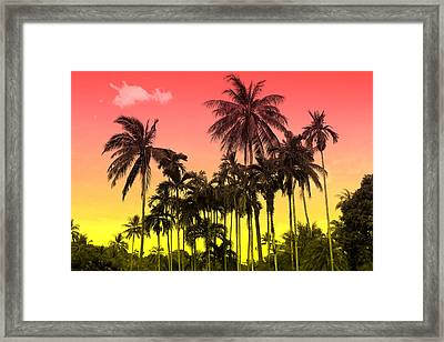 Tropical 9 Framed Print by Mark Ashkenazi
