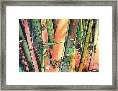 Tropical Bamboo Framed Print