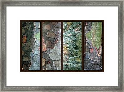 Tropical Bark Collage II Framed Print by Jessica Jenney