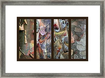Tropical Bark Collage Framed Print by Jessica Jenney