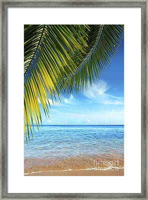 Tropical Beach Framed Print by Carlos Caetano