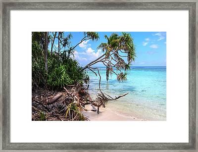 Tropical Beach Framed Print by Jenny Rainbow