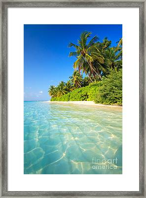 Tropical Beach - Maldives Framed Print by Matteo Colombo