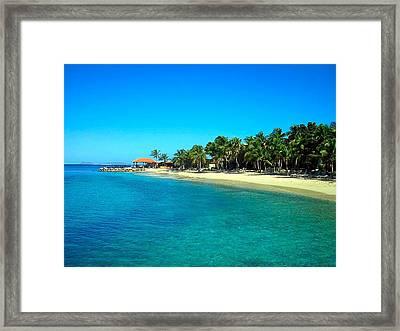 Tropical Bliss Framed Print