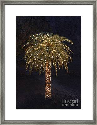 Tropical Christmas Framed Print