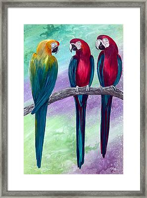 Tropical Color Framed Print by George Bloise