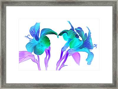 Tropical Daydream Framed Print by Krissy Katsimbras