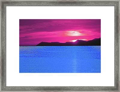 Tropical Delight Framed Print by John Brennan