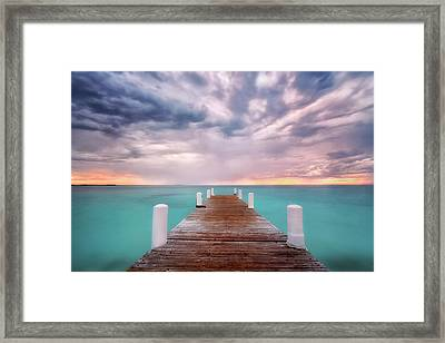 Tropical Drama Framed Print