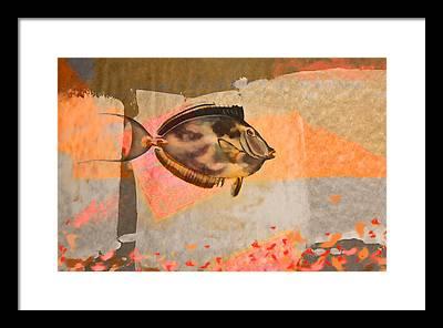 Bahamas Digital Art Framed Prints